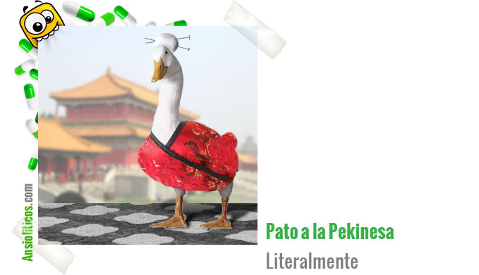 Chiste Animales: Pato a la Pekinesa